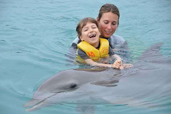Spenden Delphintherapie
